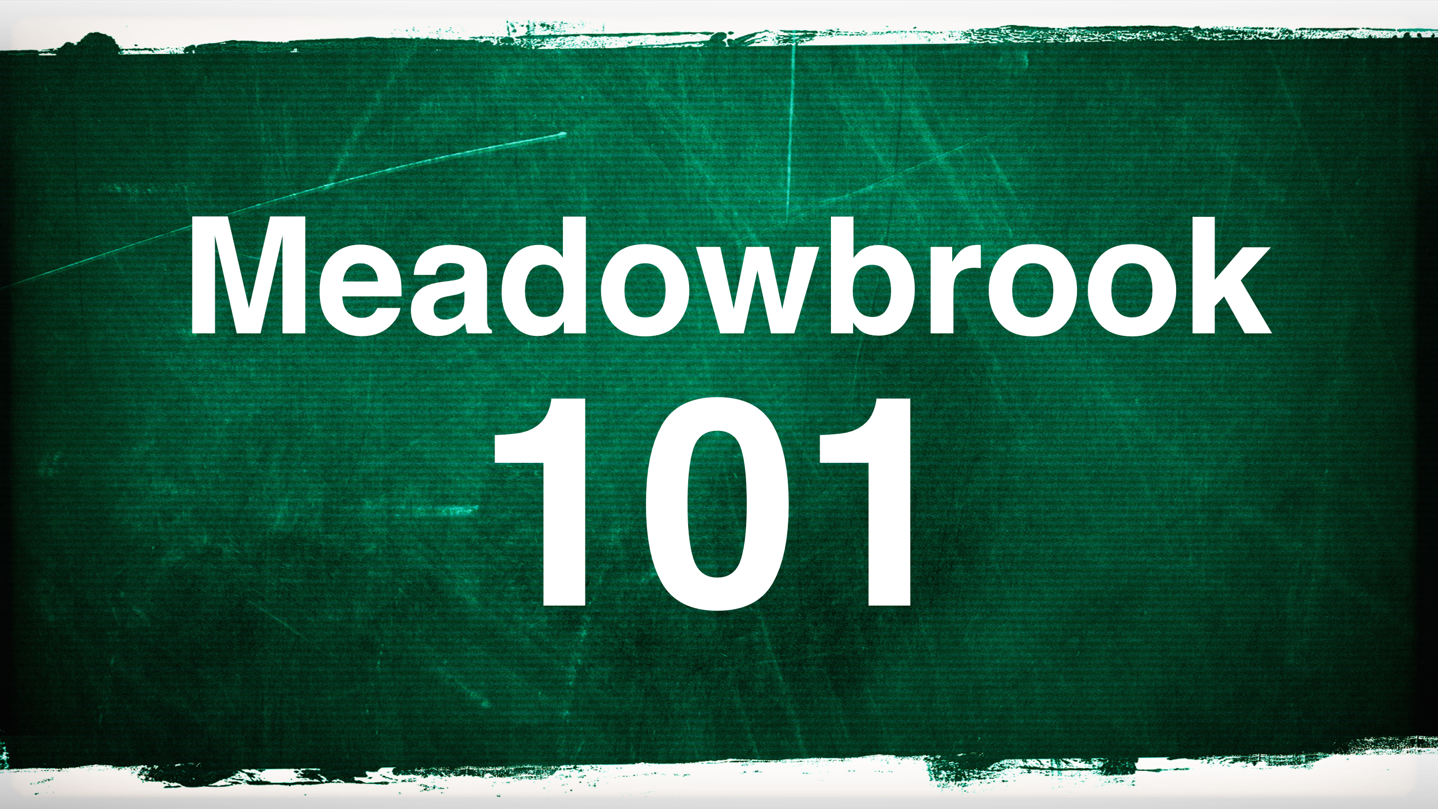 Meadowbrook101.jpg